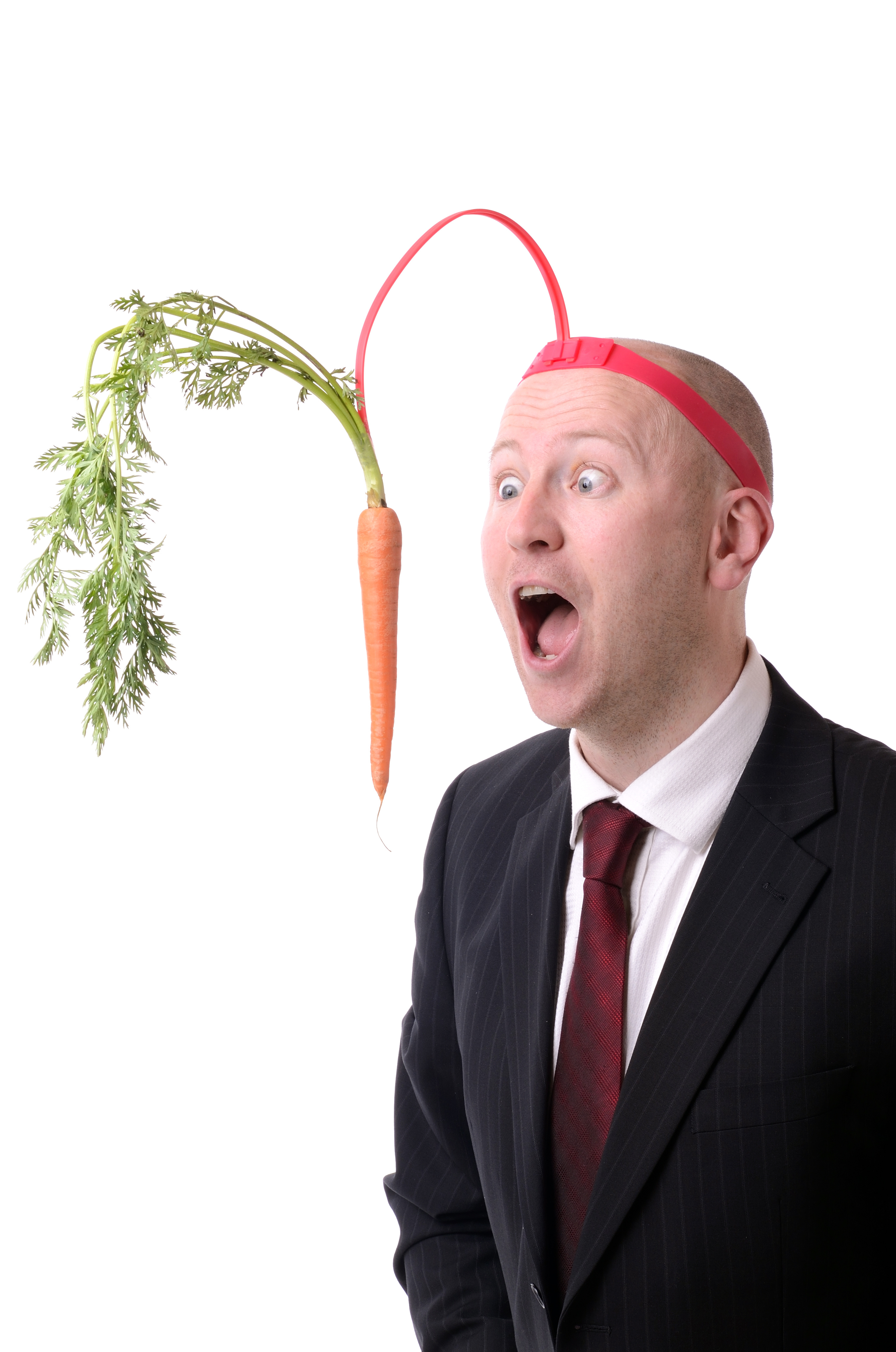 carrot-and-stick.jpg